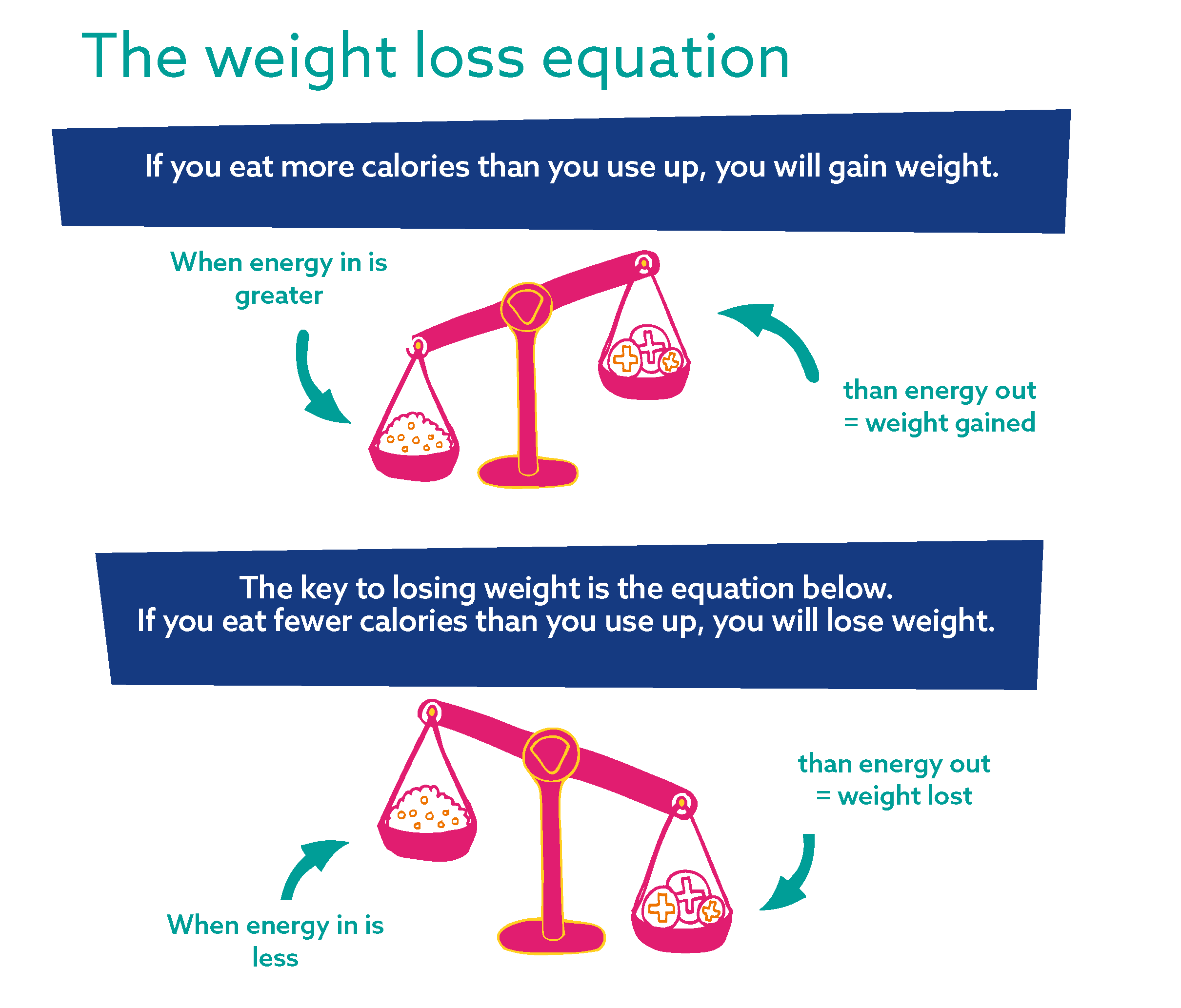The Weight Loss Equation