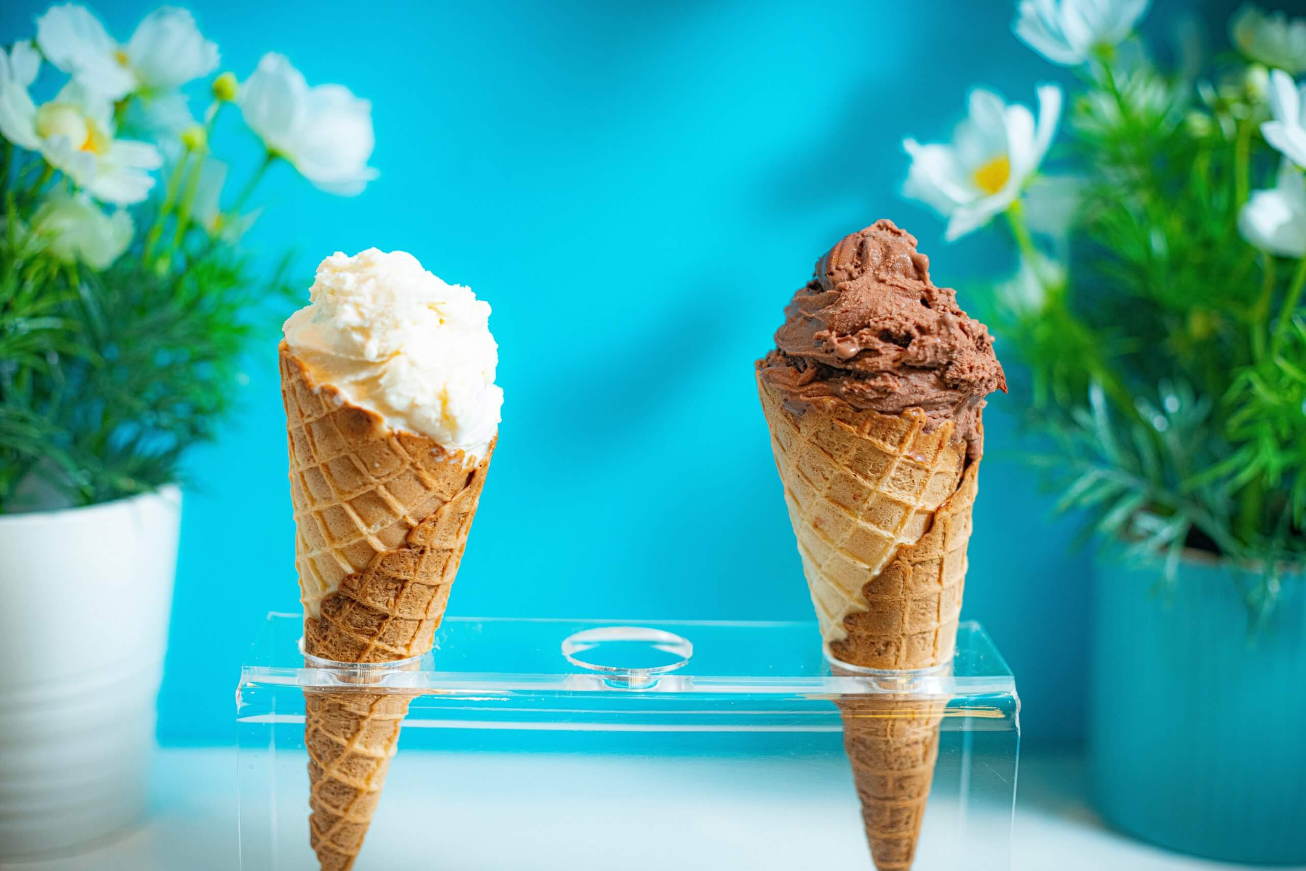 Two ice-cream cones in front of flowers
